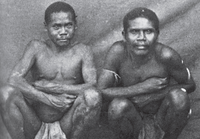 Malayan weretiger (right). Source: Peter Boomgaard, Frontiers of Fear: Tigers and People in the Malay World, 1600–1950. New Haven, CT: Yale University Press, 2001, p. 189. Originally from Walter William Skeat and Charles Otto Blagden, Pagan Races of the Malay Peninsula. London: Macmillan, 1906.